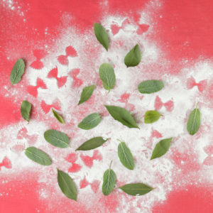 Sage, basil, flour and Farfalle pattern on red tablecloth