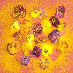 Arrangement mit Kurkuma und essbare Blüten