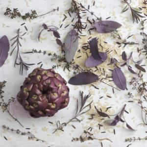 Still Life mit lila Artischocke