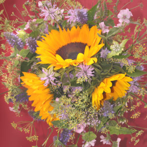 Bouquet with sunflowers, background in burgundy