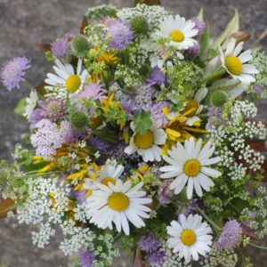 Meadow bouquet 'impressionistic'