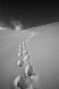 Fußspuren im Schnee, Winter, Berg