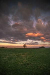 Einzelner Baum, Sonnenuntergang, Wolkenstimmung