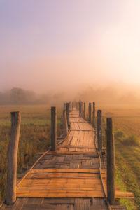 Thailand, Morgenstimmung. Bambussteg, Weg in das Unbekannte