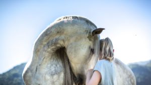 Grey horse and girl with blond hair, intimate and familiar gesture