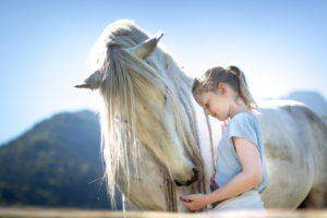Grey horse and girl with blond hair