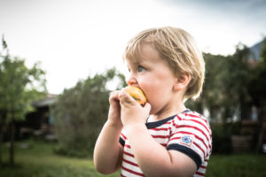 Toddler, two-year-old with red and white striped tee, eating an apple