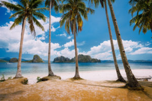 El Nido Beach Paradise: Pinagbuyutan Island with palm trees. Palawan, Philippines.