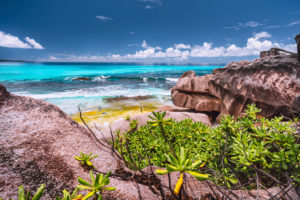 Amazing granite boulders in the jungle of Anse Source d'Argent on La Digue Island, Seychelles.