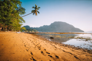 El Nido village coastline, with sandy beach and palm trees and local boats in shallow lagoon at golden sunset light. Palawan. Philippines.