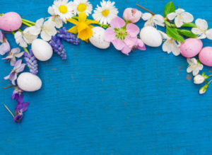 Easter eggs and flowers on blue wood, easter decoration with copy space