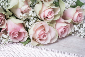 Pink roses and gypsophila, greeting card Valentine's Day