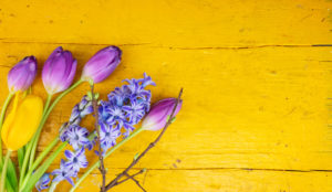 Tulips and hyacinth on yellow wood, greeting card