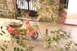 Red Vespa on pavement behind branches