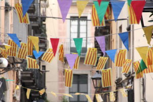 Flags in Griona