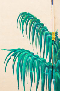 Palm leaves painted on house wall