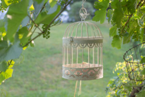 Vogelkäfig im Garten