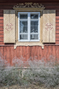 Geography, Lithuania, Gypsophila flowers near wall of the wooden house