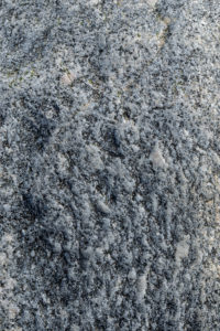 Natural Science, Surface of stone boulder closeup