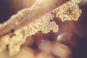 Eiskristalle, close-up