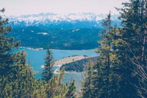 Blick vom Herzogsstand auf den Walchensee