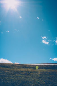 Wiese, blauer Himmel, Sonne, Gegenlicht