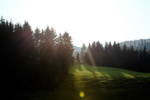 Germany, Bavaria, Mittenwald, meadow, back light