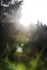 Germany, Bavaria, Mittenwald, meadow, hut