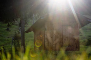 Germany, Bavaria, Mittenwald, hut, meadow