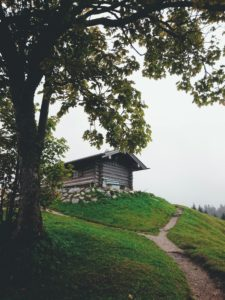 Hoher Kranzberg, summit house, tree