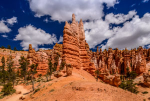 USA, Utah, Garfield County, Bryce Canyon National Park, Amphitheater, Queens Garden, View from the Queens Garden Trail
