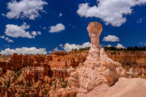 USA, Utah, Garfield County, Bryce Canyon National Park, Amphitheater, Hoodoo am Queens Garden Trail