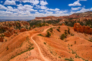 USA, Utah, Garfield County, Bryce Canyon National Park, Amphitheater, Blick vom Queens Garden Trail