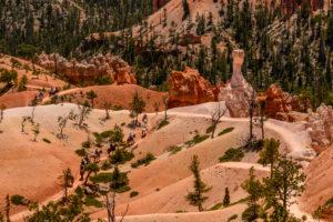 USA, Utah, Garfield County, Bryce Canyon National Park, Amphitheater, Queens Garden Trail