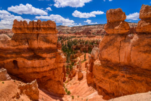 USA, Utah, Garfield County, Bryce Canyon National Park, Amphitheater, Queens Garden, Blick vom Queens Garden Trail