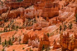 USA, Utah, Garfield County, Bryce Canyon National Park, Sunrise Point, Amphitheate