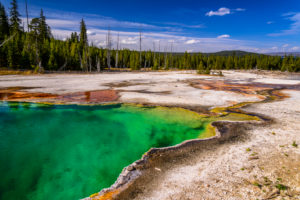 USA, Wyoming, Yellowstone National Park, West Thumb Geyser Basin, Abyss Pool