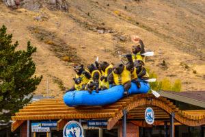 USA, Wyoming, Jackson Hole, Jackson, Rafting Werbung, Bärenfiguren