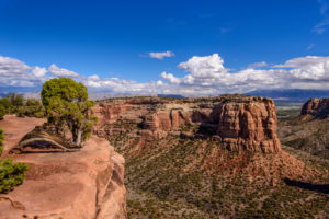 USA, Colorado, Colorado National Monument, Fruita, Wedding Canyon, Blick von Otto's Trail