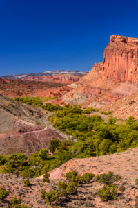 USA, Utah, Wayne County, Torrey, Capitol Reef National Park, Sulphur Creek Valley, Fruita Historic District mit Fruita Cliffs