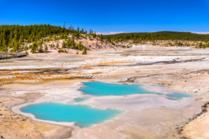 USA, Wyoming, Yellowstone National Park, Norris Geyser Basin, Porcelain Basin, Colloidal Pool