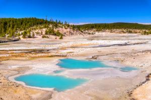 USA, Wyoming, Yellowstone National Park, Norris Geyser Basin, Porcelain Basin, Colloidal Pool