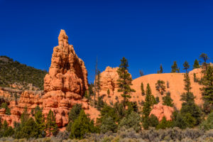 USA, Utah, Garfield County, Dixie National Forest, Panguitch, Red Canyon, Blick am Scenic Byway 12