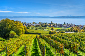 Germany, Baden-Württemberg, Lake Constance, Immenstaad on Lake Constance, view near Hohberg