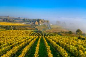 Deutschland, Baden-Württemberg, Bodensee, Hagnau am Bodensee, Vordergrund Weingut Aufricht, Stetten, Blick von Kriegsgräberstätte Lerchenberg