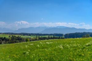 Deutschland, Bayern, Oberbayern, Tölzer Land, Dietramszell, Ortsteil Großeglsee, Frühlingslandschaft gegen Voralpen