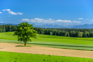 Germany, Bavaria, Upper Bavaria, Tölzer Land, Egling, Attenham district, cultural landscape against Alpine chain