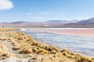Bolivia, Eduardo Abaroa Andean Fauna National Reserve, Laguna Colorada