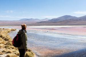Bolivia, Eduardo Abaroa Andean Fauna National Reserve, Laguna Colorada, female observes flamingos