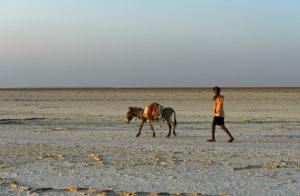 Hirte mit Esel auf dem trockenen Assale Salzsee, Danakil Senke, Afar Region, Äthiopien
